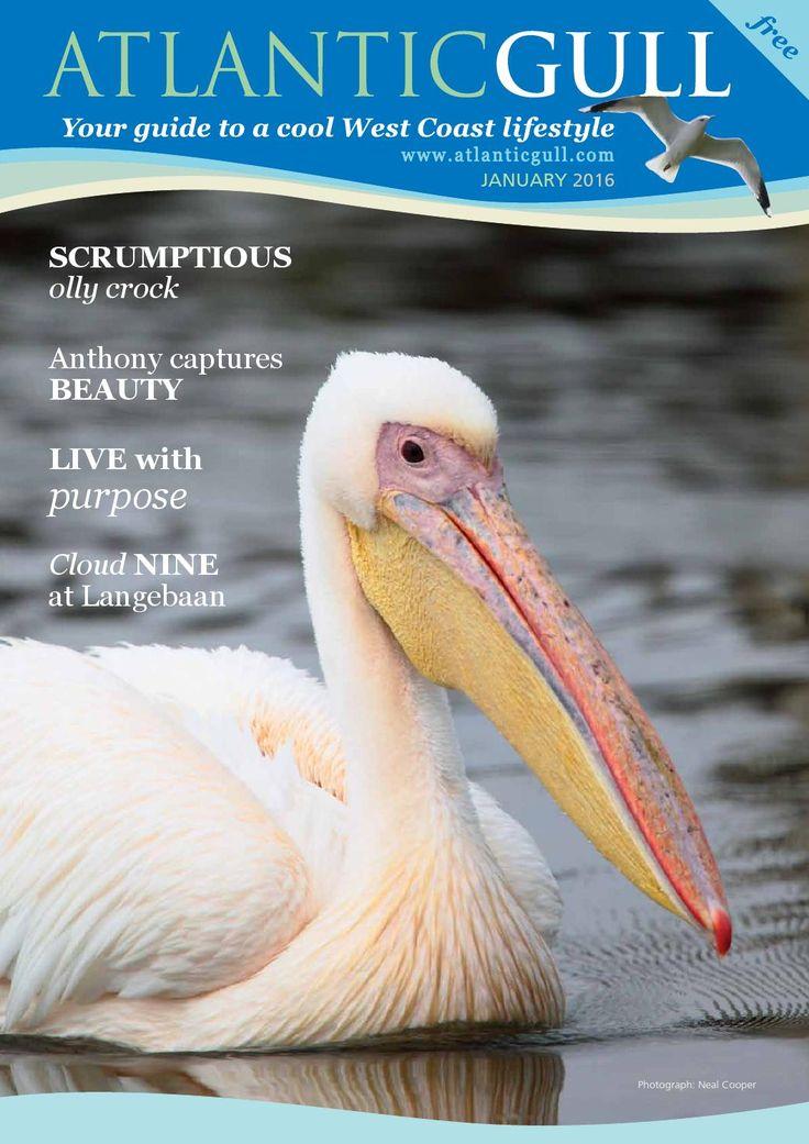 Atlantic Gull January 2016  The good life on the West Coast.