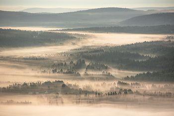 Tiina Törmänen Photography