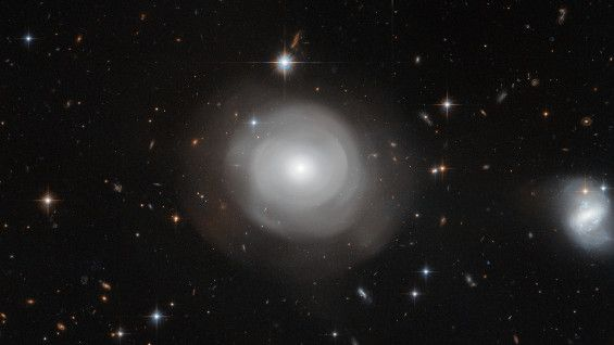 Located roughly 270 million light-years from Earth in the constellation of Centaurus (The Centaur), a bright constellation in the southern sky, ESO 381-12, also known as PGC 42871, is categorised as a lenticular galaxy — a hybrid galaxy type that shares properties with both spiral galaxies and elliptical galaxies.