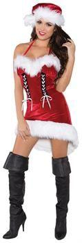 Women's Miss Santa Costume for Christmas
