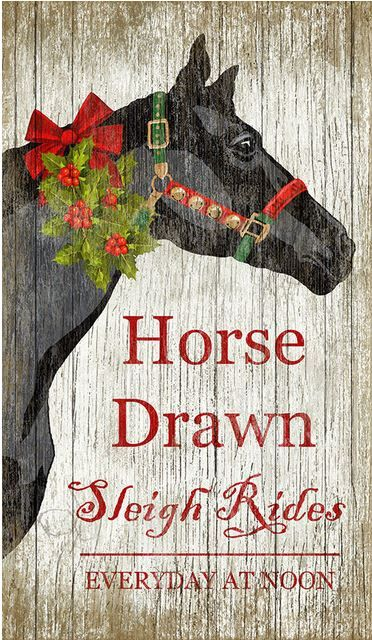 Would love to try to make this sign. Probably less challenging to just buy it though! http://www.houzz.com/photos/33733952/Sleigh-Rides-Christmas-Horse-Sign-traditional-novelty-signs