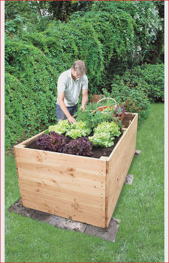 Garten Konzept 30 Frisch Hochbeet Selber Bauen Bauanleitung Pdf O99p Kebun