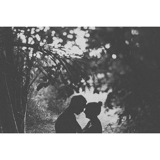 Who else loves a good silhouette? :) #silhouettelovers  #kapiticoastengagement #kapiti