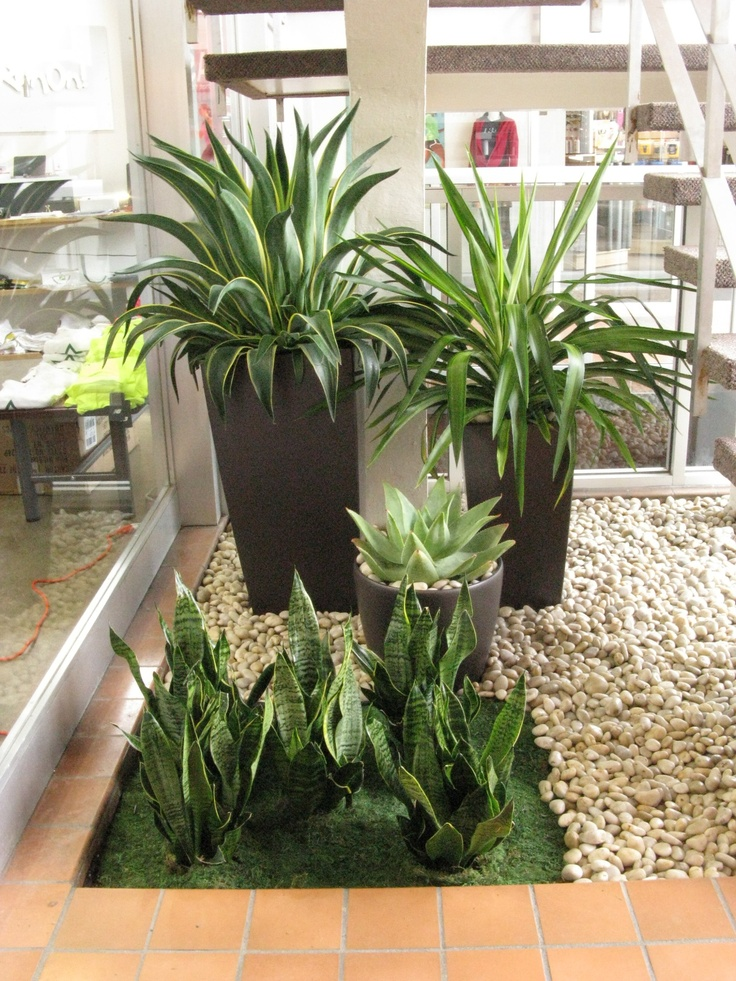 design by corporate green potted plantspot plants