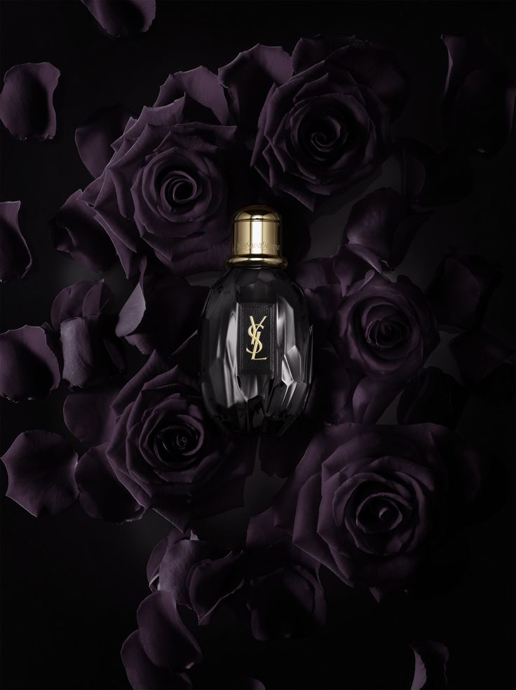YSL 'Parisienne' | Yves Saint Laurent | Still Life Photographer for Tush magazine.  #black  #perfume