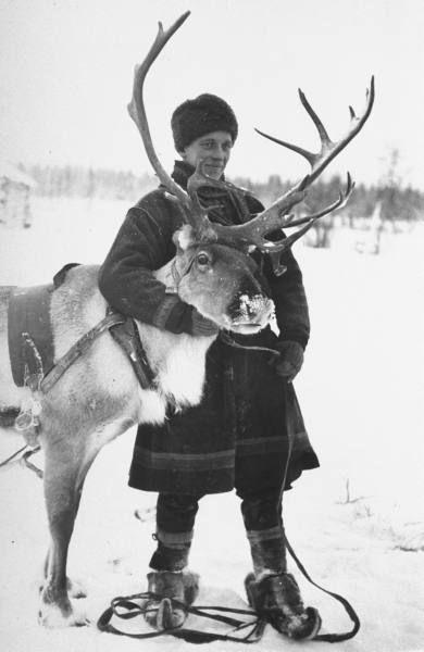 laplander w. reindeer during the russo-finnish war | finland 1940 | foto: carl mydans