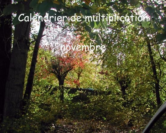 Calendrier de multiplication novembre