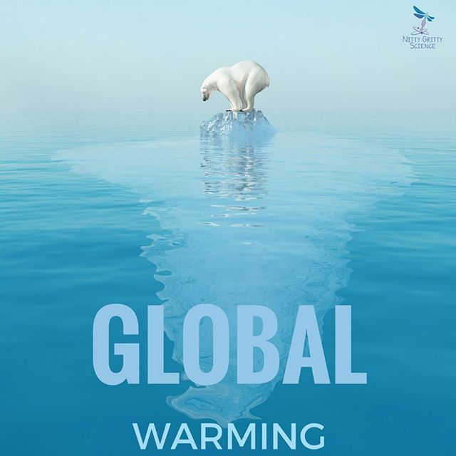Students will learn about Climate Cycles & Recent Climate Change in my Earth Science Interactive Notebook: Weather and Climate.