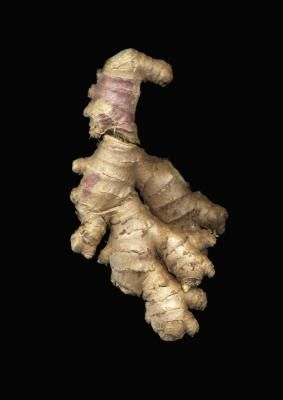 How to Make Ginger Bitters..Ginger bitters are useful in foods as well as alcoholic drinks. A few drops of the bitters in a stir-fry sauce, a cup of tea or a chicken marinade, for example, will infuse the food with a powerful ginger flavor.