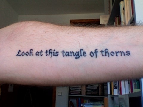 """""""Look at this tangle of thorns"""" is the last sentence in the first chapter of Vladimir Nabokov's Lolita. Pau tattooed it to me at Global Tattoo (Palma, Majorca). The font is Lucida Blackletter."""