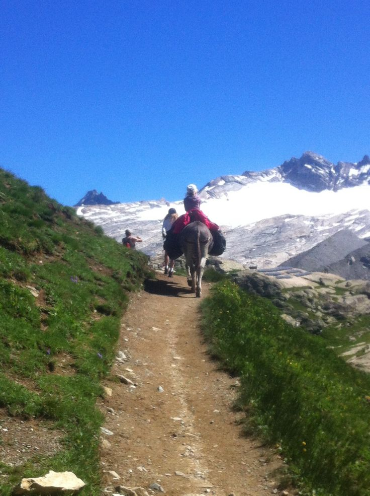 Franse Alpen met een ezel