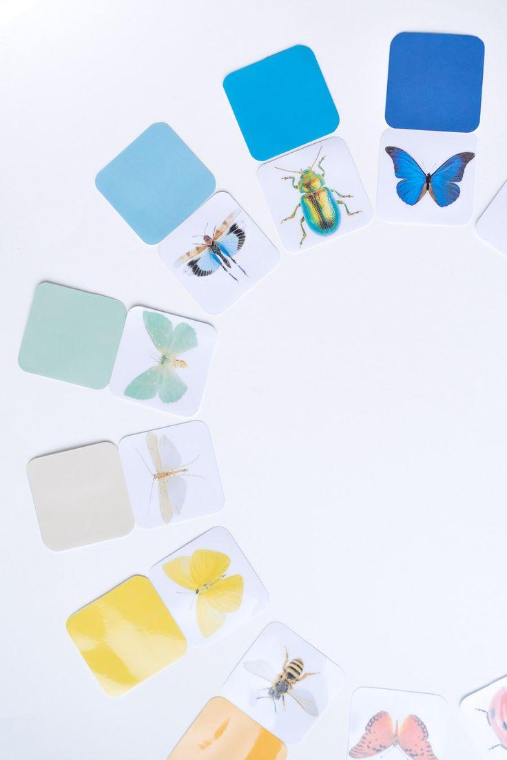 Schmetterlinge Spiele