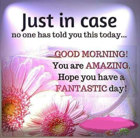 Good Morning! You Are Amazing! Hope You Have A Fantastic Day!