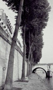 Alexander strolls along the Seine hoping to find the Parisian Pianist. http://www.amazon.com/Night-Crossing-Third-Trilogy-Remembrance-ebook/dp/B00Q3Y57SW/