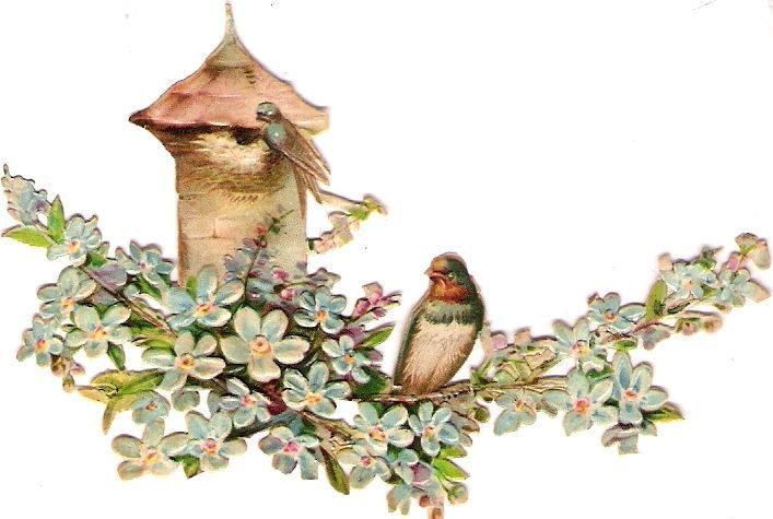 Oblaten Glanzbild scrap die cut chromo Schwalbe swallow Haus Ast branch blossom