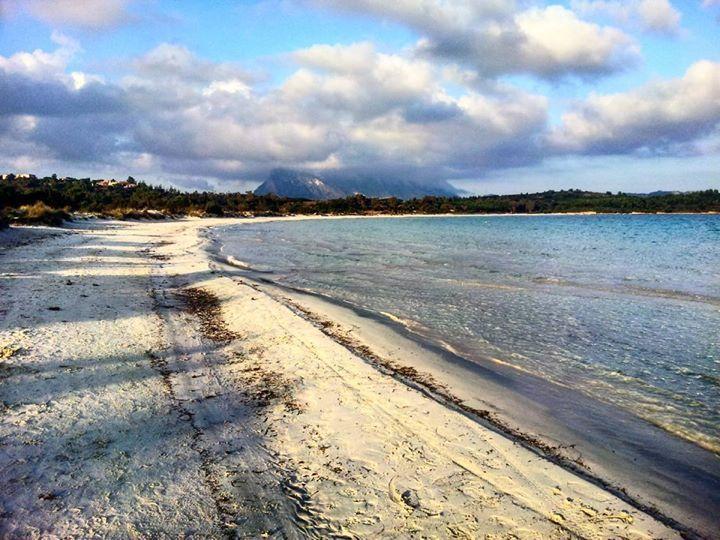 by http://ift.tt/1OJSkeg - Sardegna turismo by italylandscape.com #traveloffers #holiday   La Sardegna e il suo mai inverno. I colori di aprile al 1º di febbraio nella spiaggia più bella del versante San Teodoro. #vsco #vscocam #vscoitaly #sardinia #sardegna #italy #italia #beach #spiaggia #igersardegna #igerscagliari #lanuovasardegna #natura #travel #traveling #tourism #vscosea #vscoeurope #lifestyleblog #lifestyle #colorful #topofvsco #vscogrid #lovely #sun #sunny #summer #sea #mare Foto…