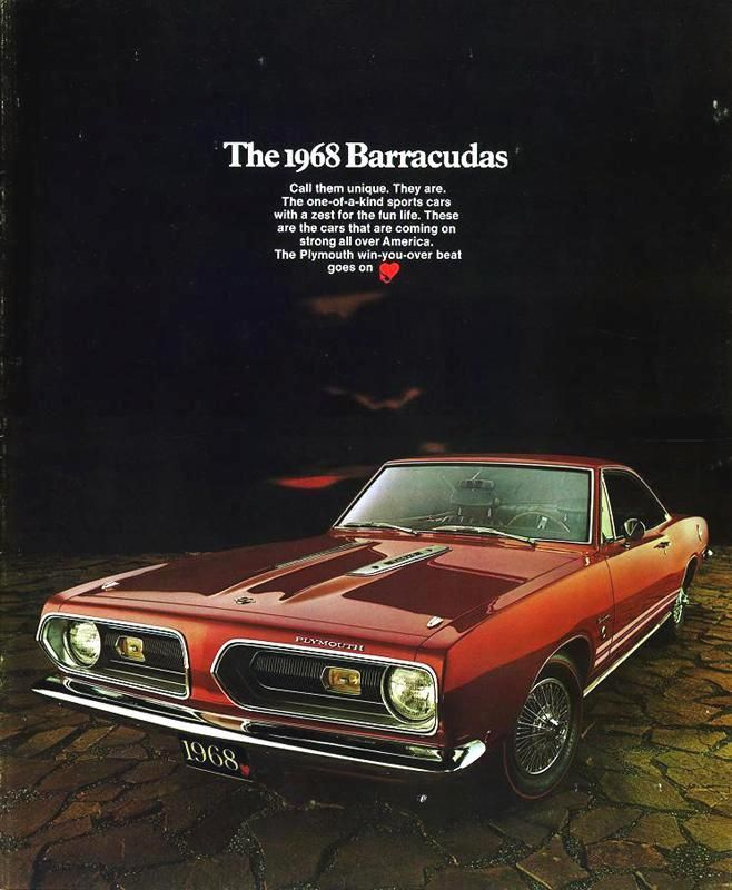 166 Best Images About Barracuda On Pinterest