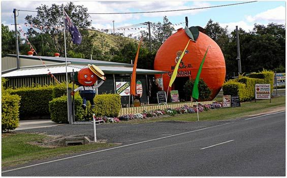 """Gayndah (Australia)—""""the citrus capital of Queensland"""" . My brothers family owns and runs the Big Orange."""
