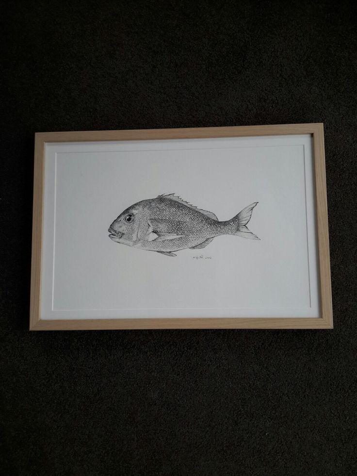 Pointillism illustration of a Snapper  Fish by @kristin.ivill.art