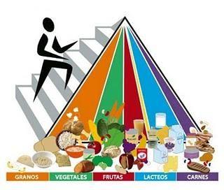La pirámide nutricional actual divide los grupos alimenticios en…