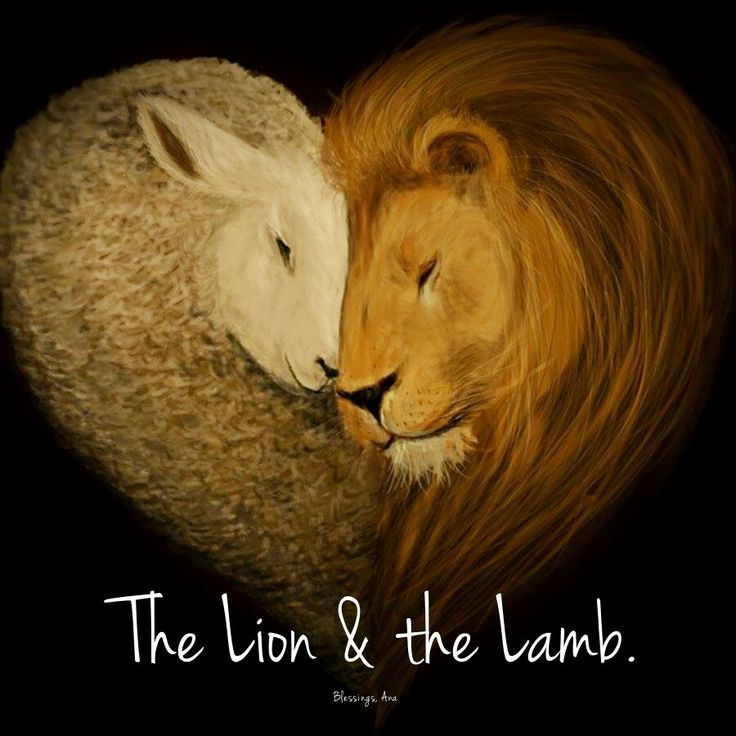 Good morning y'all have a wonderful day! Behold the Lamb of God the Lion of Judah. The love of God made incarnate for us. God loves you! Blessings, Ana