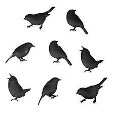 silhouet vogels