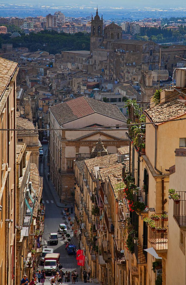 Please! Take me!  Caltagirone, Sicily