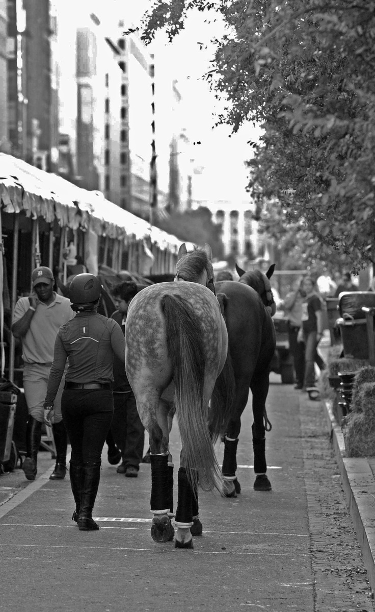 A busy scene outside the Verizon Center the Washington International Horse Show. The backside stabling at any indoor horse show is always a beehive of activity.