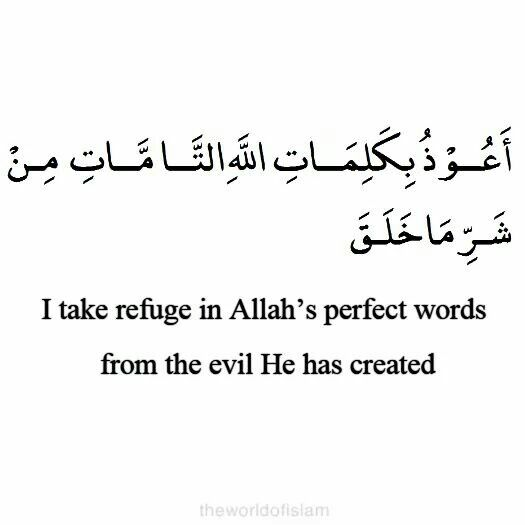 """Hadith/Benefit Narrated by Khawlah bint Hakeem Al-Sulamiyyah said I heard Prophet (S.A.W) said, """"Whoever make a stop on a journey and say this Dua, nothing will harm him until he moves on from that place"""". [Narrated by Muslim 2708]"""