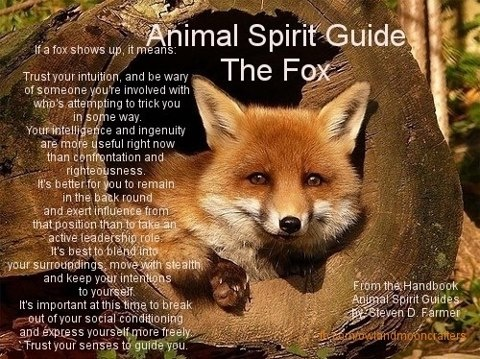 The Fox = cunning, beware of tricksters, trust your intuition, blend in and observe before speaking/taking action
