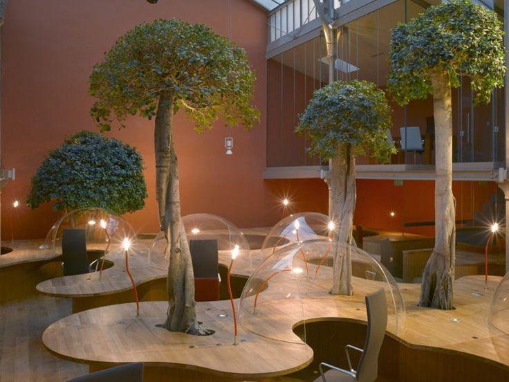 modern-contemporary-office-design