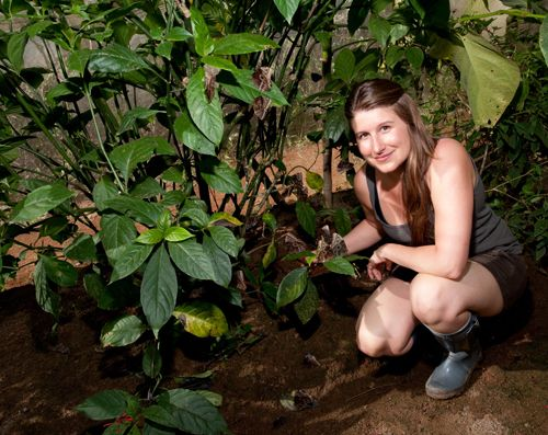 """Two-time Guelph grad Adrienne Brewster's job is the """"bee's knees.""""   After completing her bachelor's at U of G in 2003, she began work at the Cambridge Butterfly Conservatory. A year later, she chose to work part-time and pursue her master's at U of G in Environmental Biology. After finishing, Brewster returned to the conservatory full-time and was promoted to executive director in 2009. Way to go!"""