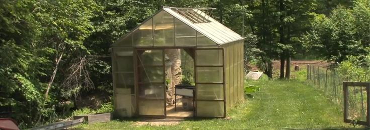 DIY Aquaponic Greenhouse