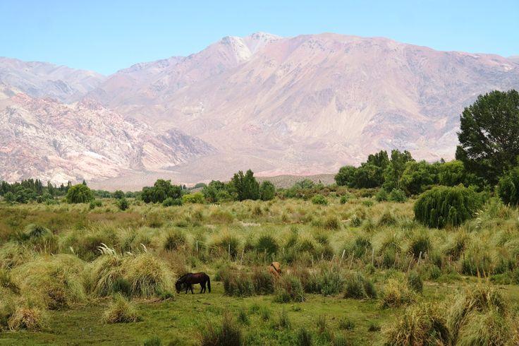 #Andes #Mendoza #Argentina #Argentyna w drodze na #Aconcagua Magda Fijołek pracownik działu Marketingu
