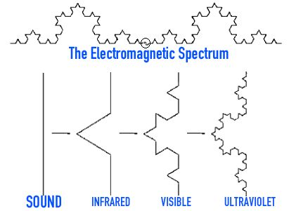 The Brain is an Advanced Fractal Antenna - Page 2 - Energetic Forum