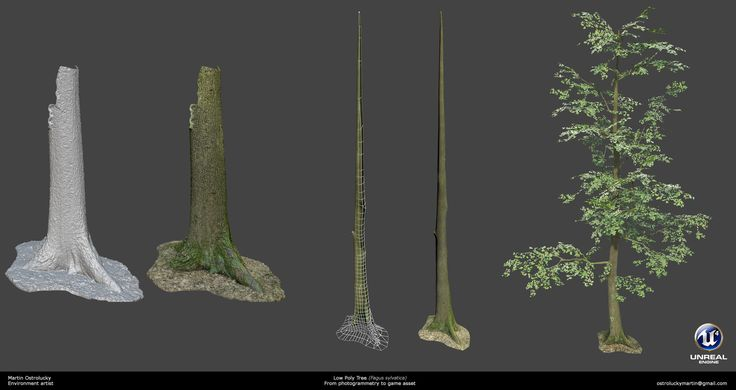 ArtStation - Forest, Martin Ostrolucky