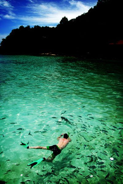 Best Beach For Snorkeling In The Florida Keys The