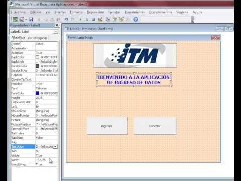 Video 1: Ejemplo de creación de formularios paso a paso en Excel
