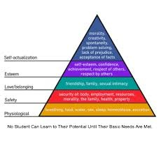 social heirarchy essay Maslow's hierarchy of needs - physiological, safety, security, belonging, social, love, self-actualization, esteem, cognitive, transcendence.