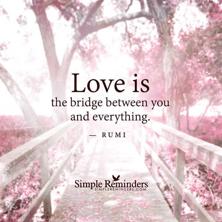 the love poems of rumi pdf