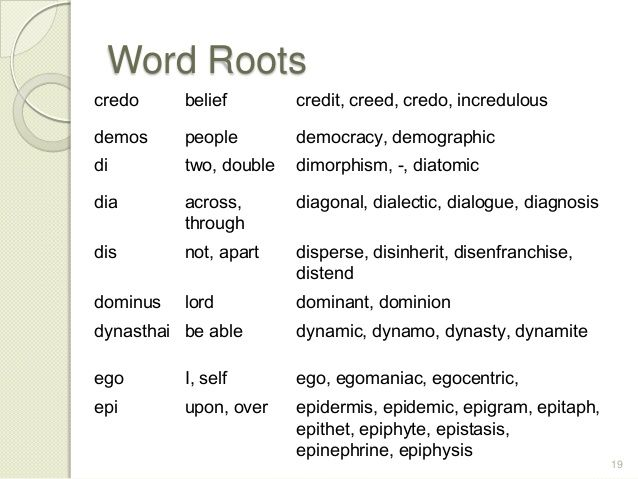 Vocabulary Etymology