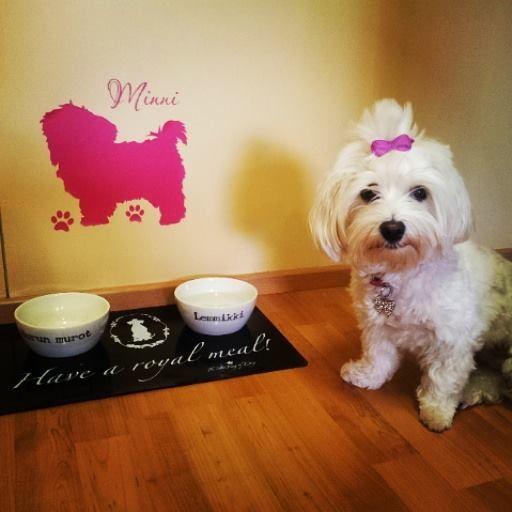 Koira siluetti #sisustustarra #koira #silhouette #siluettitarra #pink