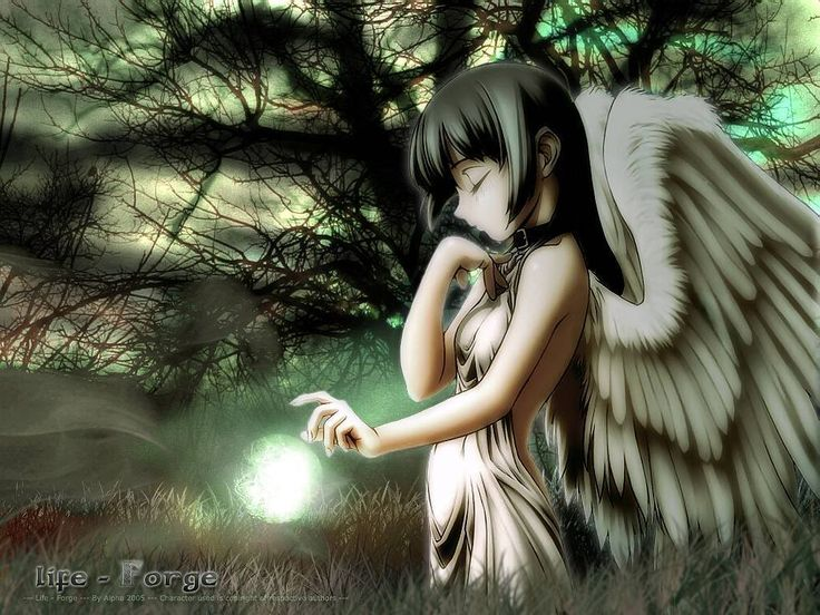 angel wallpapers for laptops - photo #49