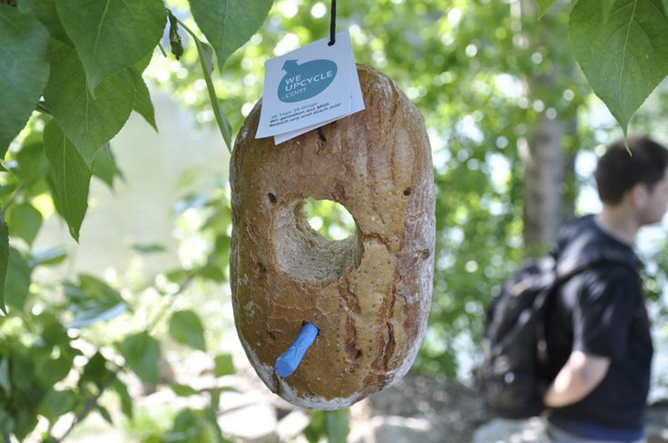 Stale loaf of bread becomes -> BIRD FEEDER!