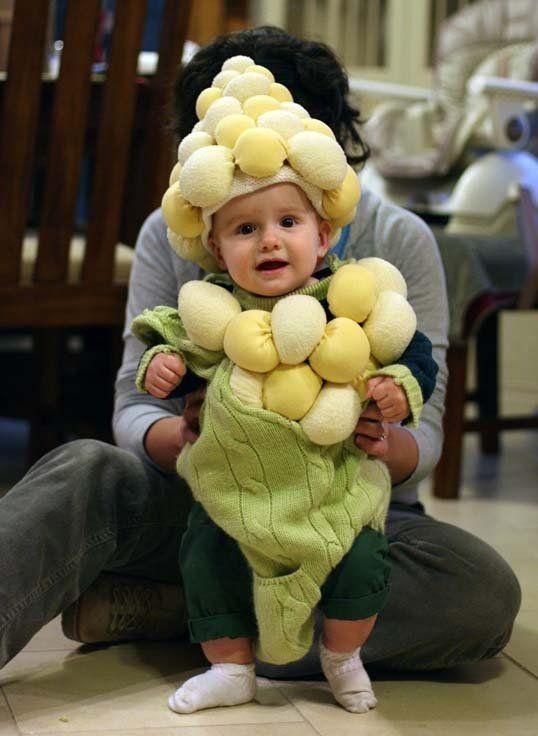 Costumes S39more Shrimp Corn And Burrito Baby Costumes  sc 1 st  Meningrey & Shrimp Costume For Baby - Meningrey
