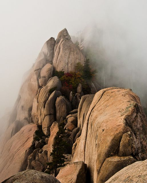 Seoraksan National Park, Gangwon-Do (South #Korea). Pray for all Koreans maybe pinning would make the leaders happy