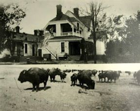 Charles Goodnight's Ranch  - Goodnight, Texas
