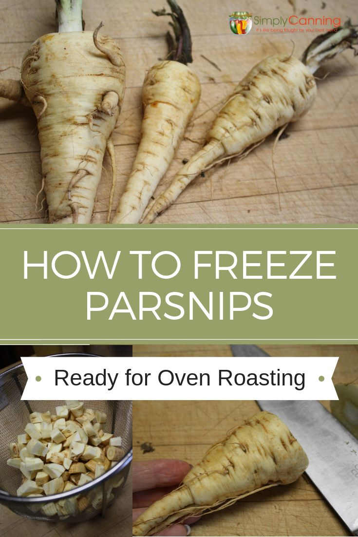 Freezing parsnips how to freeze parsnips ready for