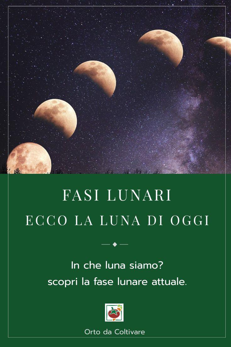Fasi Lunari La Luna Di Oggi E Calendario Lunare 2020 Odc Nel 2020 Fasi Lunari Coltivare La Luna