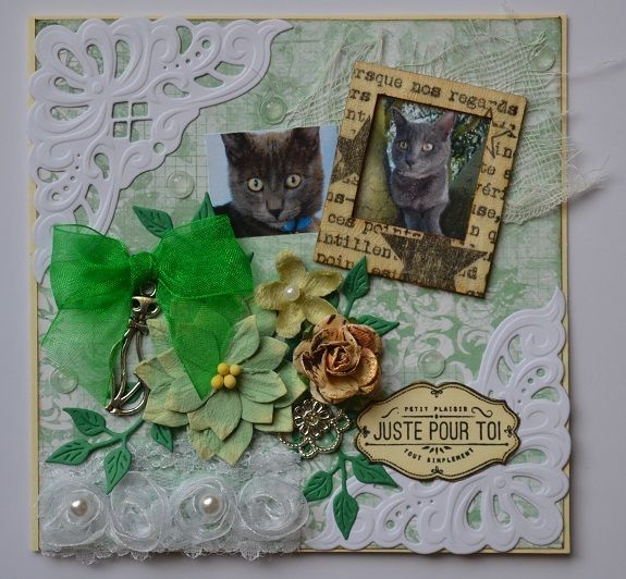 Bonjour tout le monde , j'espère que vous allez bien . Aujourd'hui , je vous montre la carte que j'ai envoyée à Rose@lie pour son jeu .Le thème est les chats .Je lui ai fais une carte avec la photo de son chat Kooki. Je veux aussi souhaiter la bienvenue...